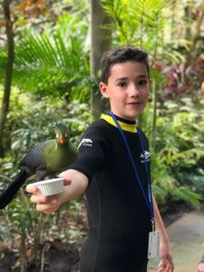 Boy with autism feeds the birds in the Aviary at Discovery Cove