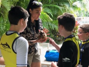 Family with boy with autism meeting an armadillo