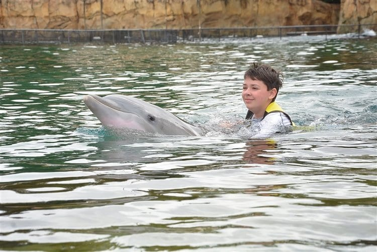 Swimming with the dolphins at Discovery Cove