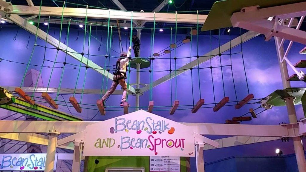 BeanStalk™ Adventure Ropes Course
