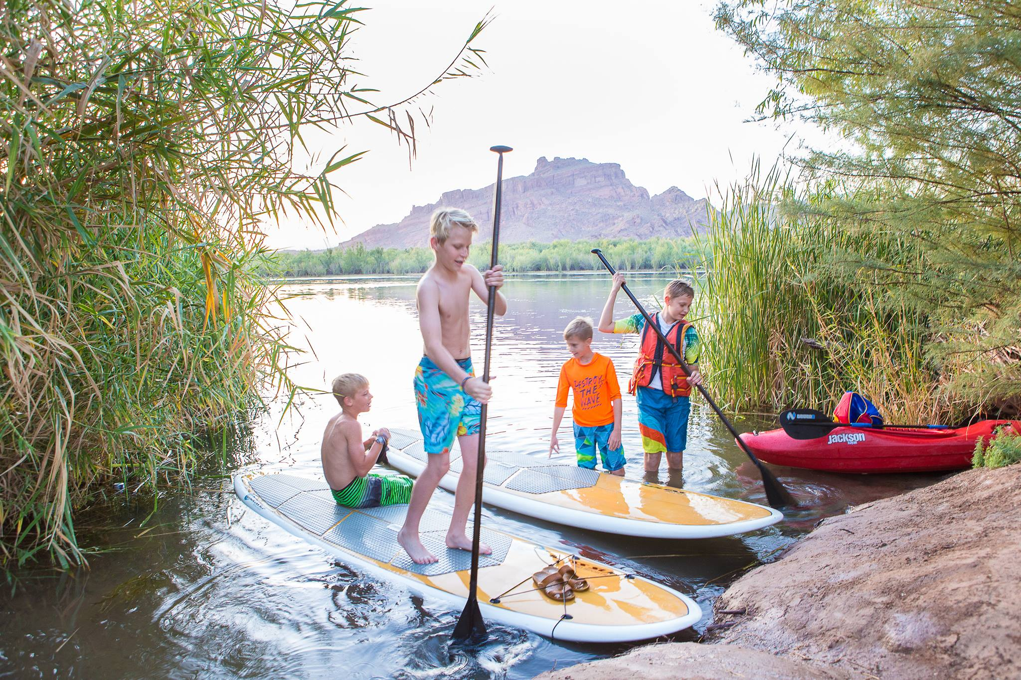 mesa_paddle boarders