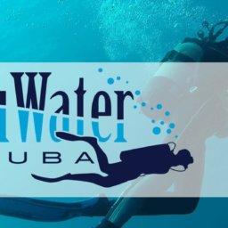 Blu Water blog header with logo