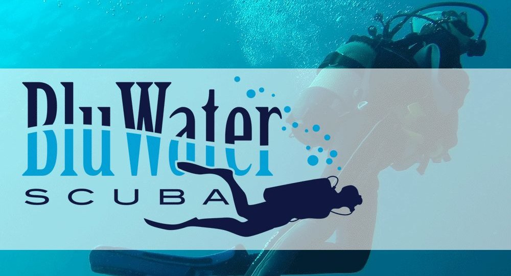 Blu Water blog header with logo