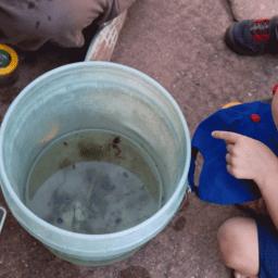 little explorer at Four Rivers Environmental Education Center